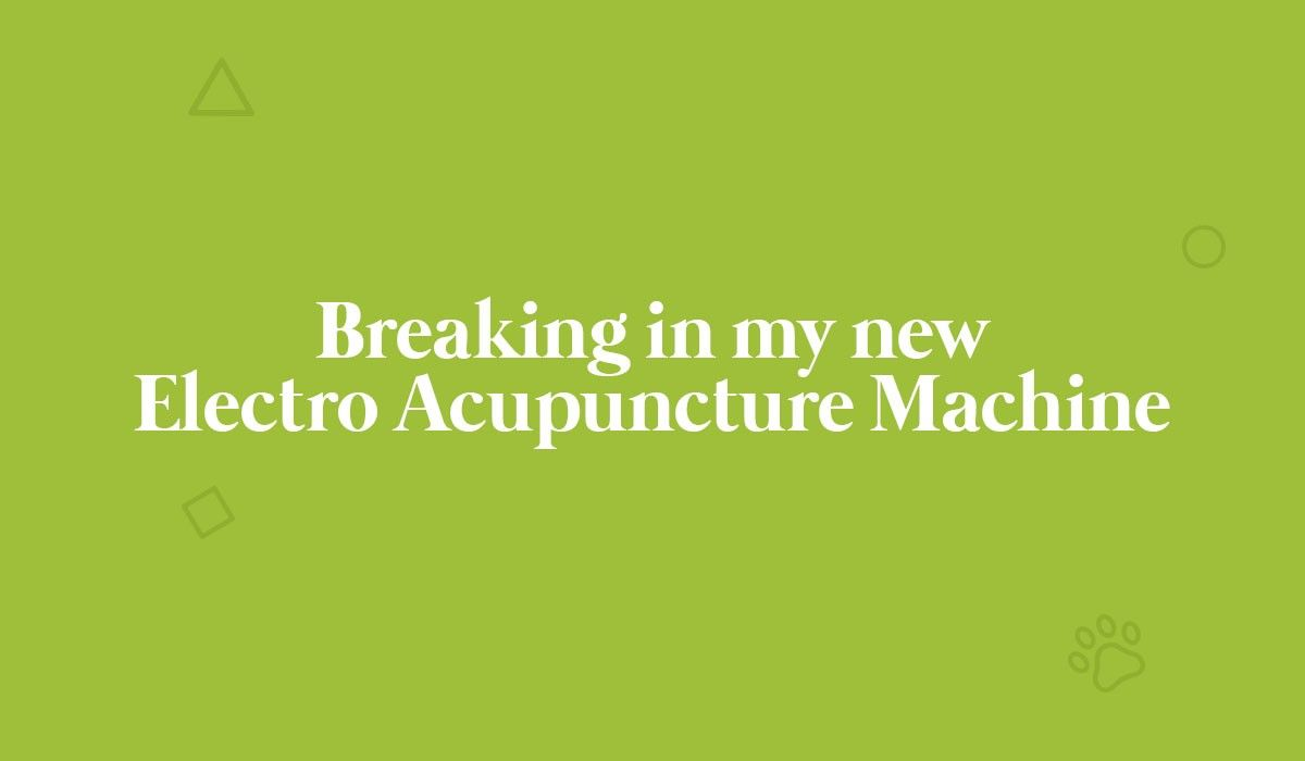 breaking-in-my-new-electro-acupuncture-machine