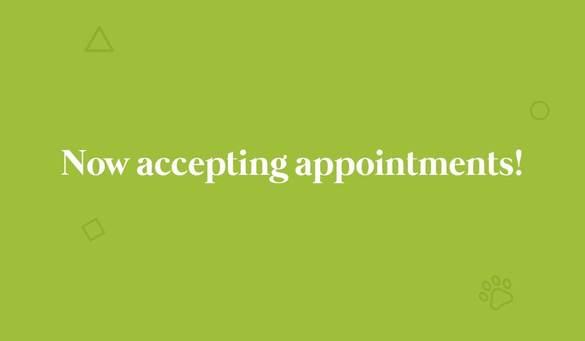 now-accepting-appointments